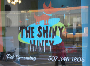 The Shiny Hiney - Pet Grooming in Spring Valley, Minnesota - Dogs, pets, bath, wash, cut, nails, trim, groom, Fillmore County, Chatfield, Rochester, Stewartville, Wykoff, Fountain, Preston, Lanesboro, Ostrander, LeRoy, Lime Springs, Cresco, Harmony, Mabel, Canton, Spring Grove, Caledonia, Rushford, Peterson, Houston, St. Charles, Shelly Skindelien